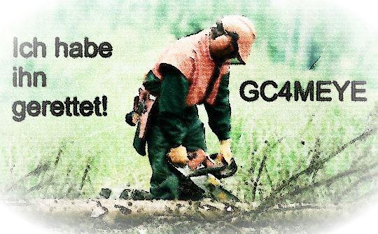 Der verschollene Waldarbeiter